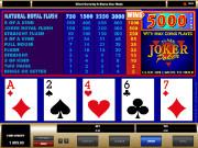 Joker Poker Videopoker